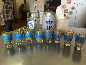 hops and malt samples at Heater Allen Brewery in McMinville, OR.